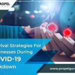 Survival Strategies For Businesses During COVID-19 Lockdown