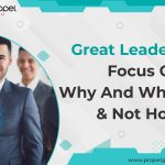 Great Leaders Focus On Why And What & Not How